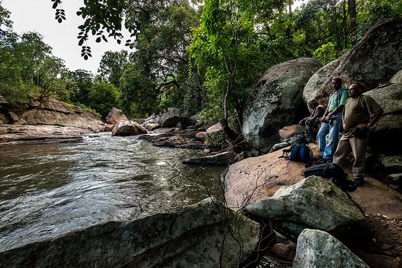Zenfolio | camerags | Chinnar Wildlife Sanctuary, Kerala